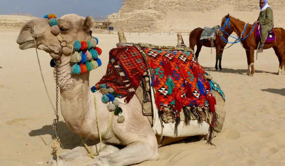 egypt-39